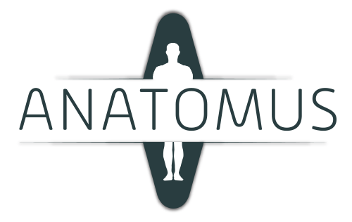Anatomus Anatomy logotype